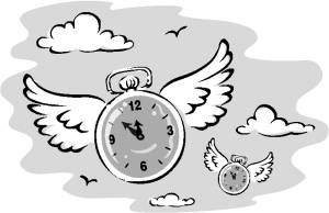 time-flies-300x194